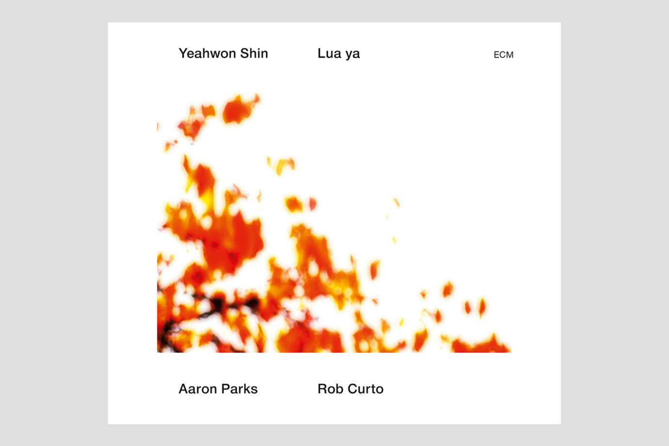 """Yeahwon's new album """"Lua Ya"""" was reviewed on All About Jazz."""